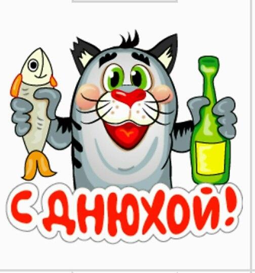 Лысый кот, картинки с надписью у меня днюшка